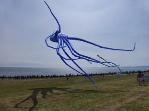 Squid kite